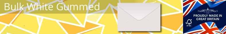 Bulk White Envelopes