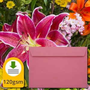 Luxury Cerise Pink Envelopes