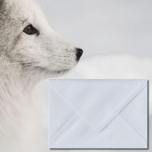 White 140gsm Envelopes